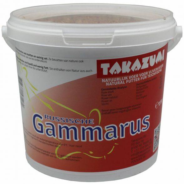 Russische Gammarus